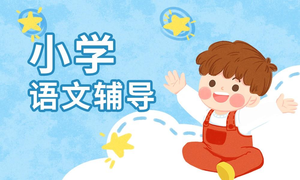 长沙秦学小学语文辅导课程