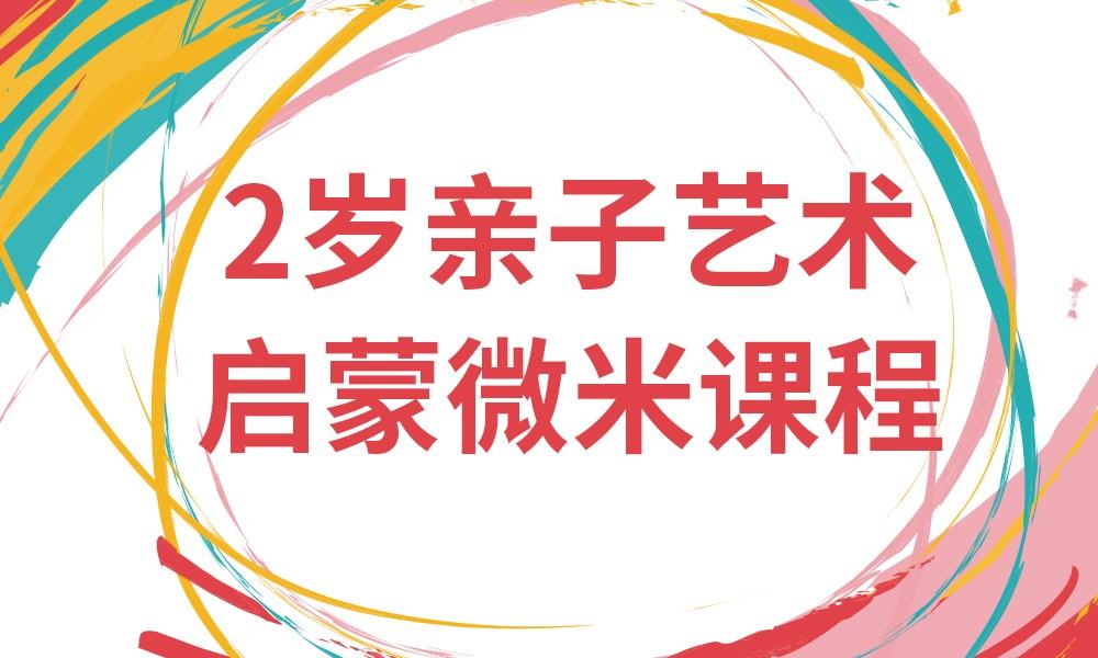 长沙杨梅红2岁启蒙微米课程