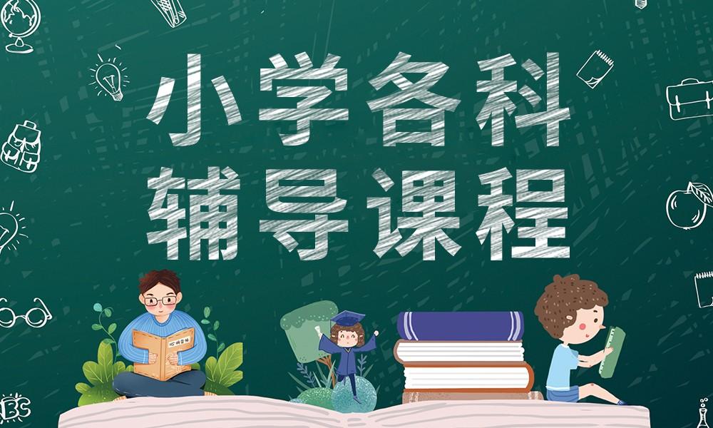 武汉学大小学各科辅导课程