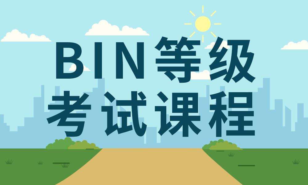 武汉大立BIN等级考试课程