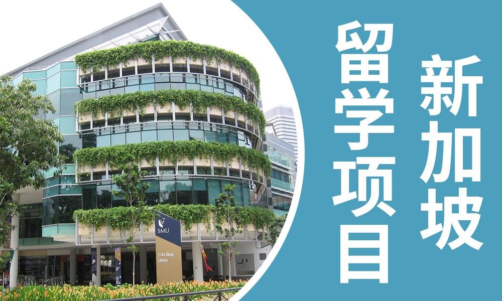 武汉美世新加坡留学项目