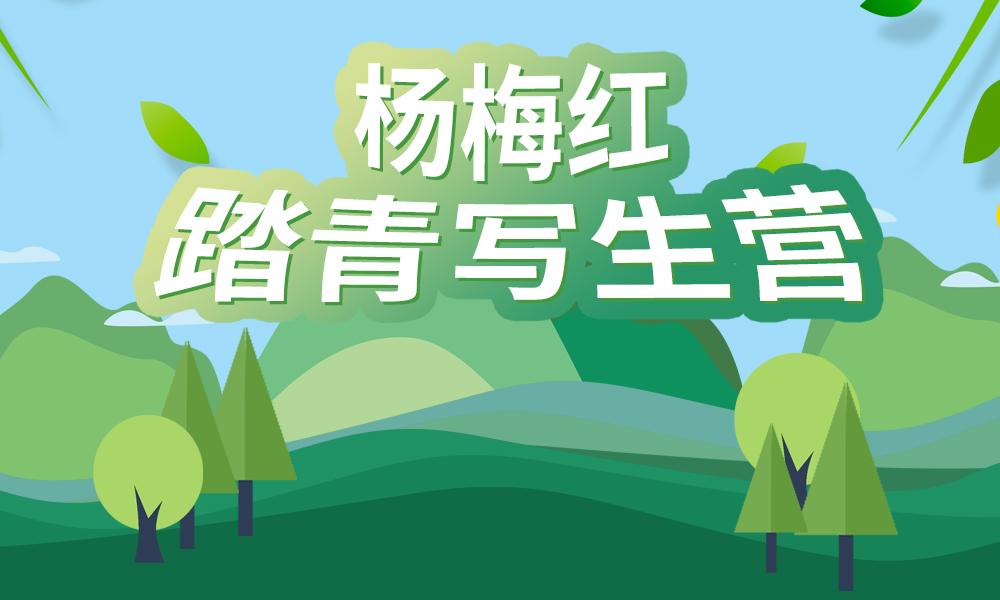 武汉杨梅红踏青写生营