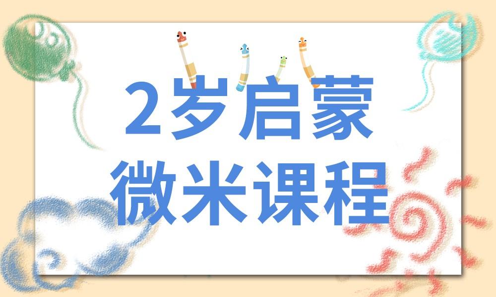 武汉杨梅红2岁启蒙微米课程
