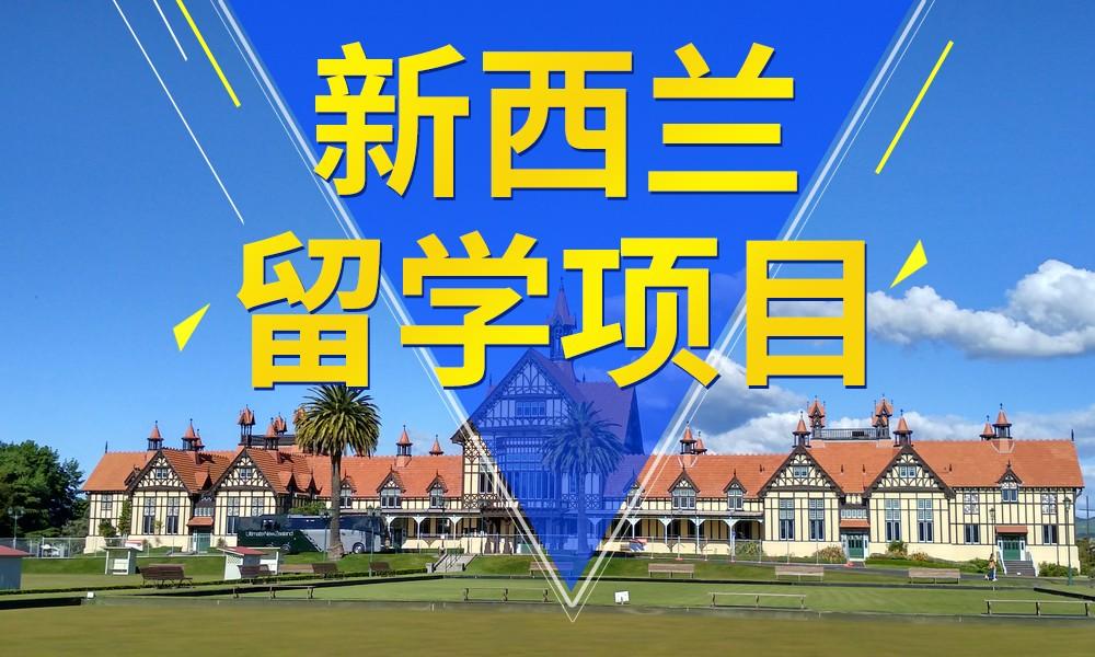 武汉立思辰新西兰留学项目