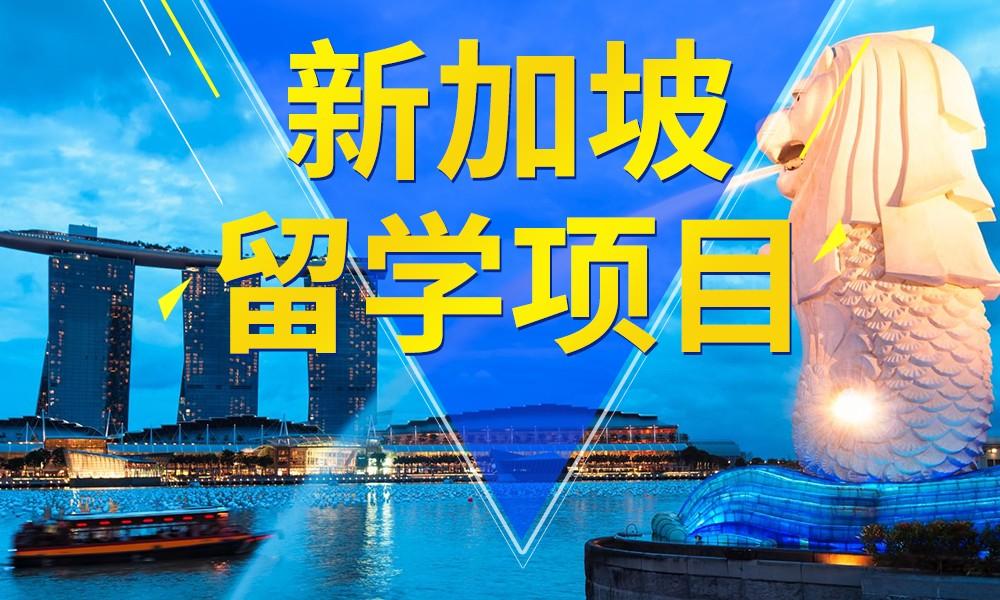 武汉立思辰新加坡留学项目