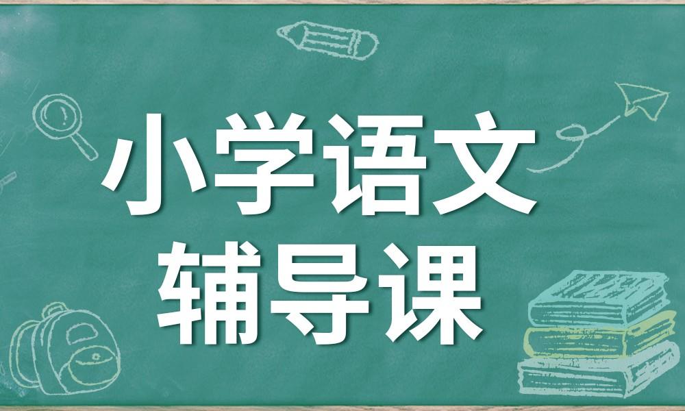 武汉文都小学语文辅导课