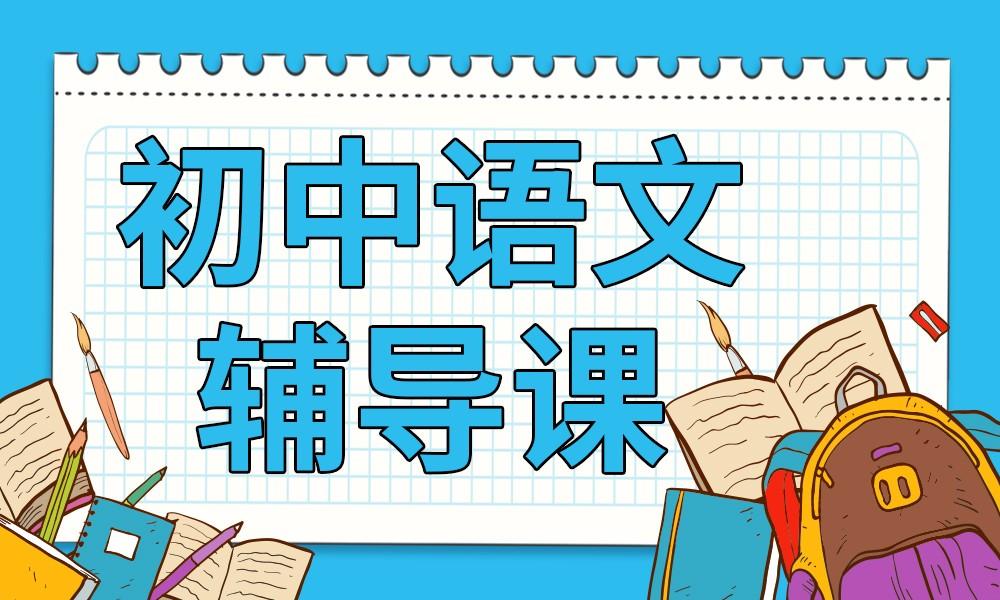 武汉文都初中语文辅导课