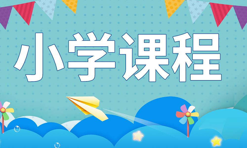 武汉信诺小学课程