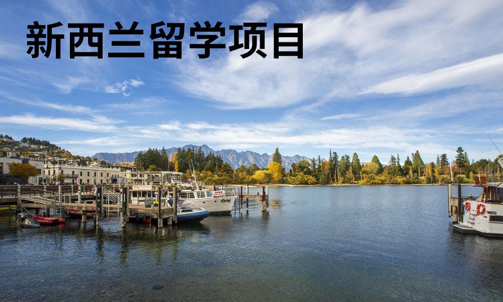青岛澳际新西兰留学项目