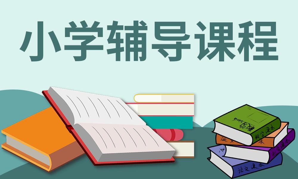郑州星火小学辅导课程