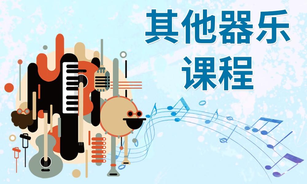 郑州瀚朴其他器乐课程