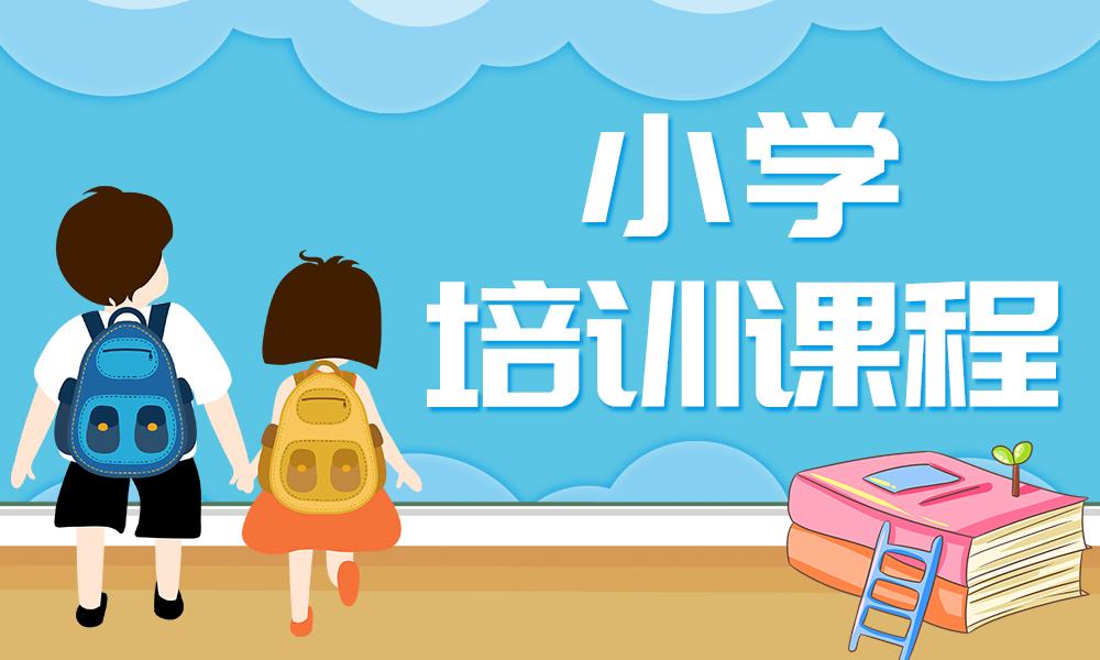 郑州智学小学培训课程