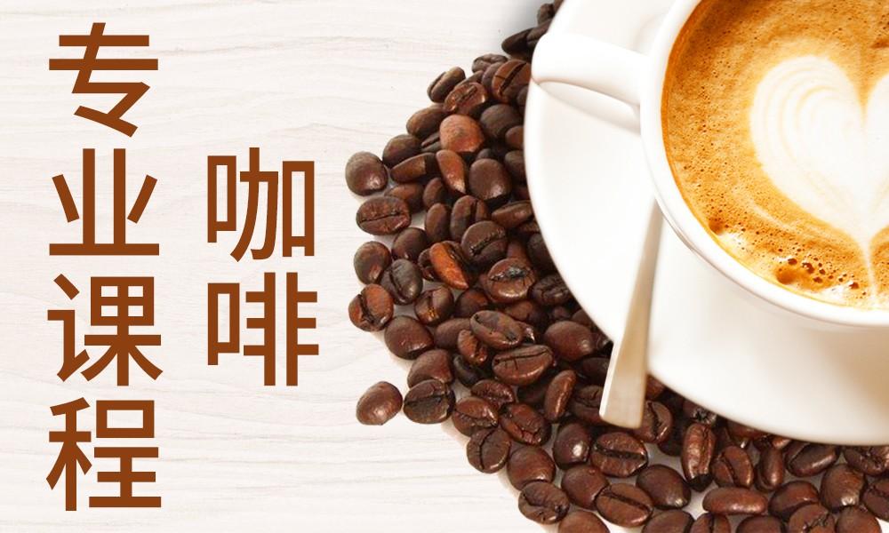 重庆新梦想咖啡专业课程